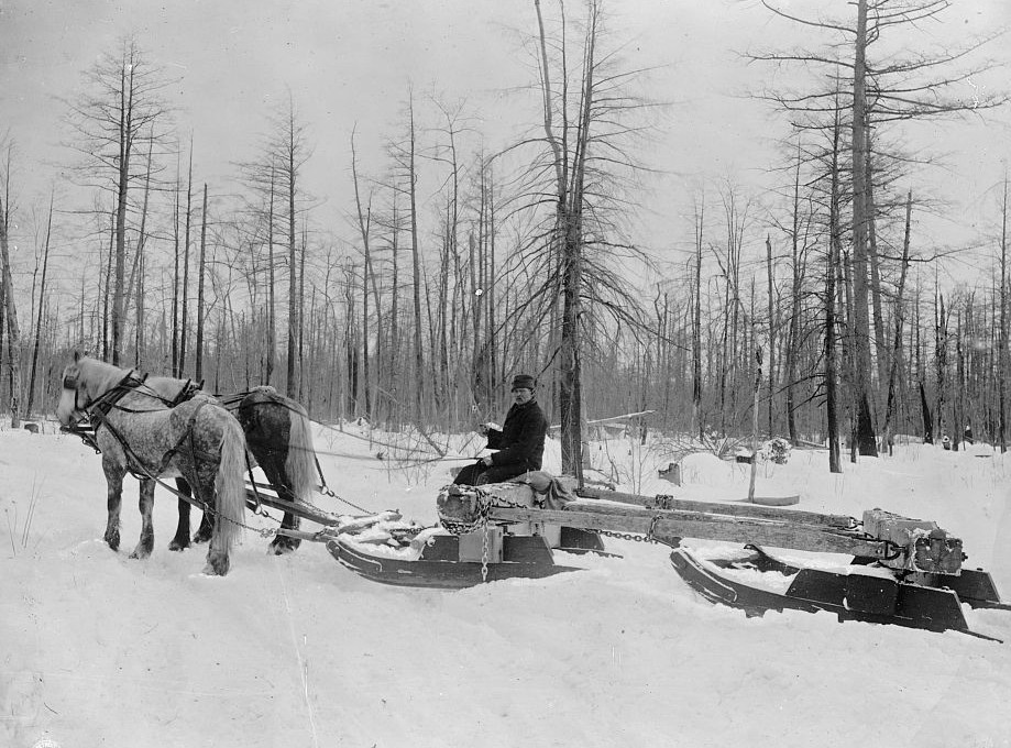 Logging in Michigan, the sled 1880