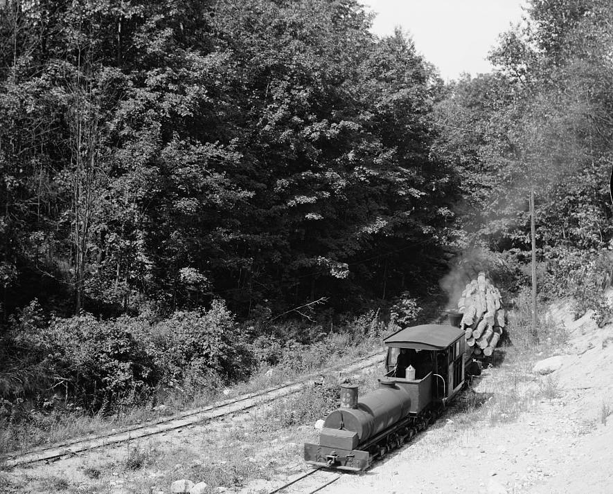 Logging train, Harbor Springs, Mich Detroit Publishing company, 1900