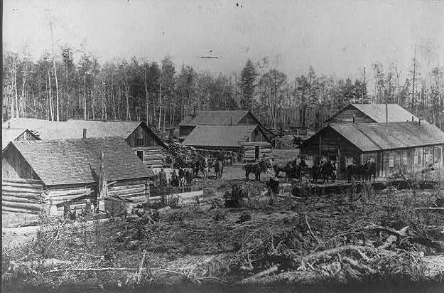 Lumbering camp in Michigan 1892
