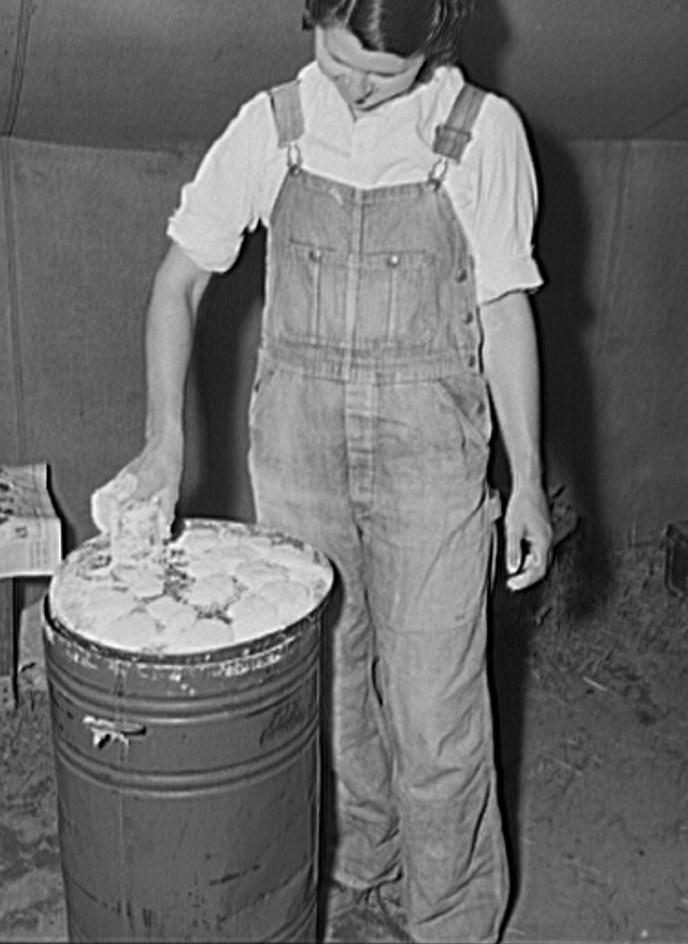 Migrant fruit worker making biscuits in her tent home. Berrien County, Michigan 1940