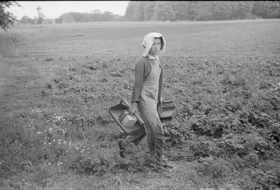 Migrant girl, strawberry picker, Berrien County, Mich. 1940