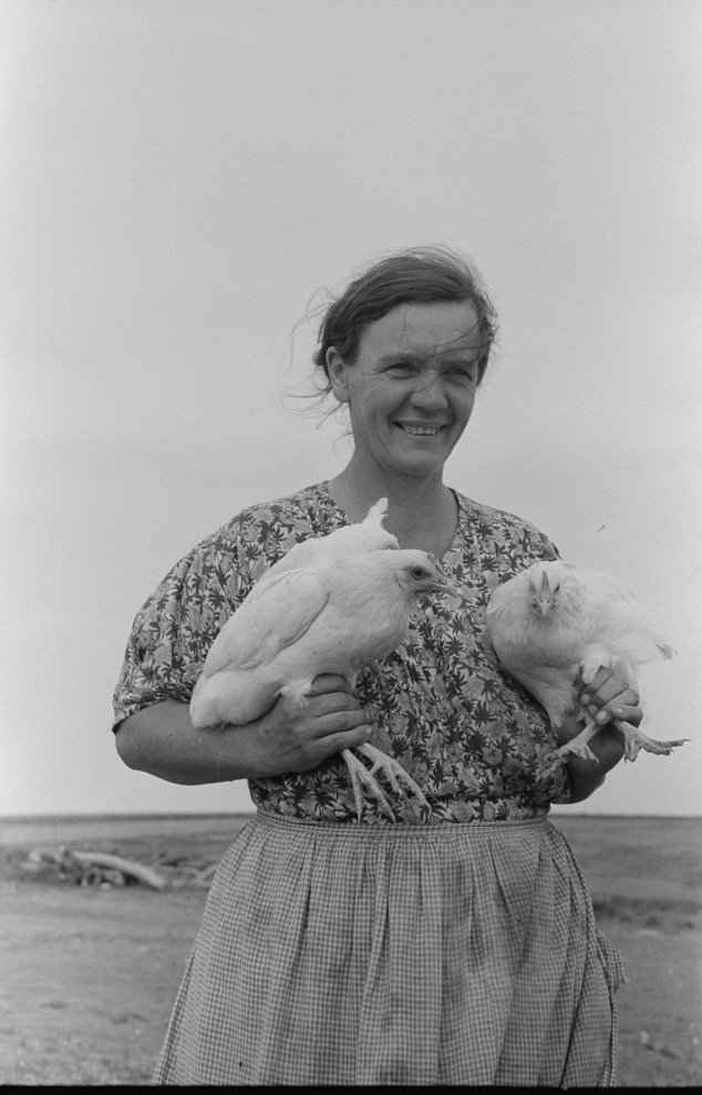 Mrs. Shoenfeldt, wife of FSA (Farm Security Administration) client, Sheridan County, Kansas. Chickens are an important part of live at home program for this family