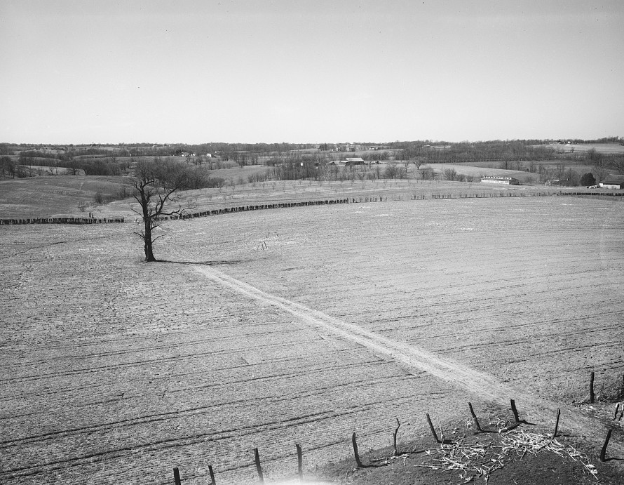 Site of proposed home. Greenhills, Ohio March 1936 by Theodor Jung