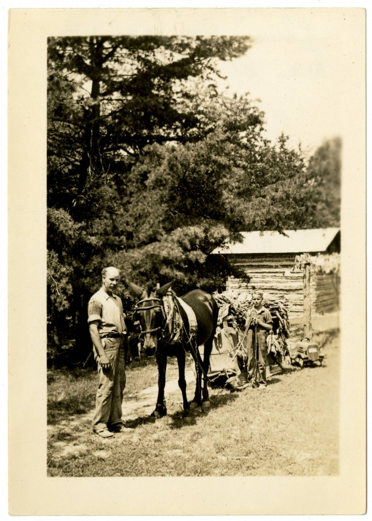 Bookmobile_users_Mr_W_T_Smith_and_son_standing_next_to_mule_and_cart (1)