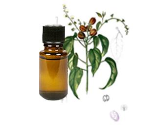 Croton-Oil