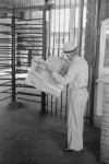 It was the 5th largest industry in the USA but it has almost disappeared. Do you know what it was?
