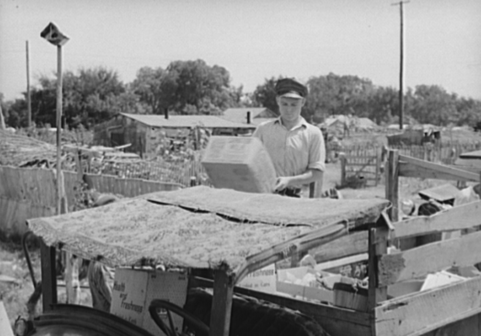 Top of oil truck made of old carpets. Boy is unloading discarded crates and overripe vegetables which he found in city market.