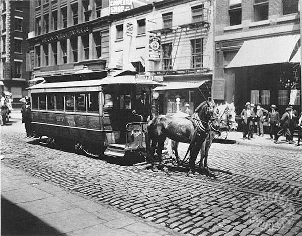 horse drawn new york