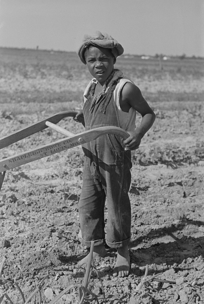 New Madrid, Missourit son of sharecropper cultivating cotton field by Photographer Russell Lee 1938