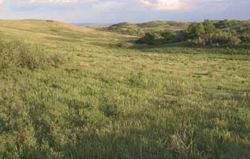 North Dakota -carolyn