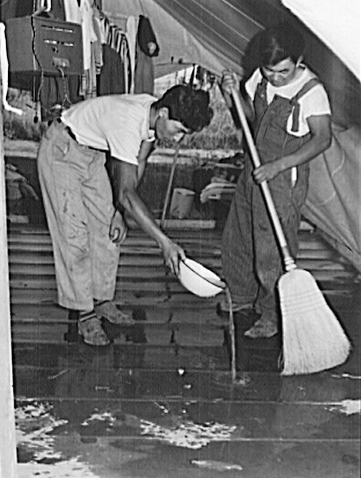 Nyssa, Oregon. FSA mobile camp. Japanese-Americans clean up their tent home 3 July 1942 (Russell Lee, Library of Congress)